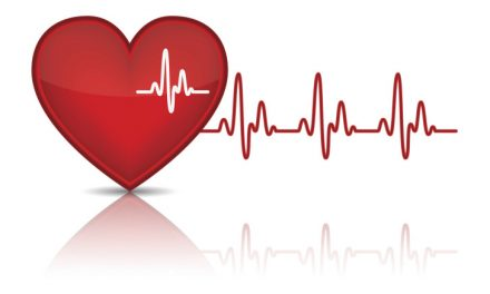 Pásma tepové (srdeční) frekvence